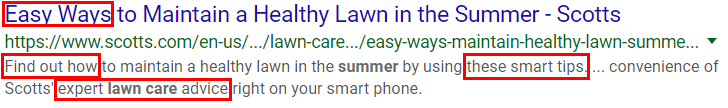 """Example of search results for """"Summer Lawn Care"""" - great example of title and description for SEO."""